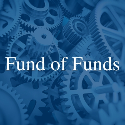 Fund of Funds Tower Fund services